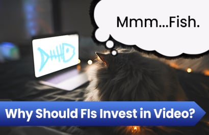 Why Should Your Financial Institution Invest in Video?