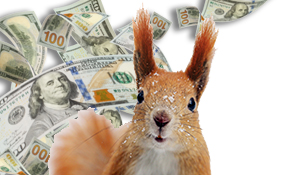 3 Ways to Squirrel Money for Emergencies